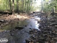 200 Acres Deer & Turkey Hunting : Rupert : Van Buren County : Arkansas