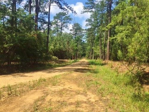 12 Acres Residential Land For Sale : McComb : Pike County : Mississippi