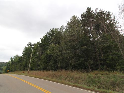 Plaifield Rd, 2 Acres : New Concord : Muskingum County : Ohio