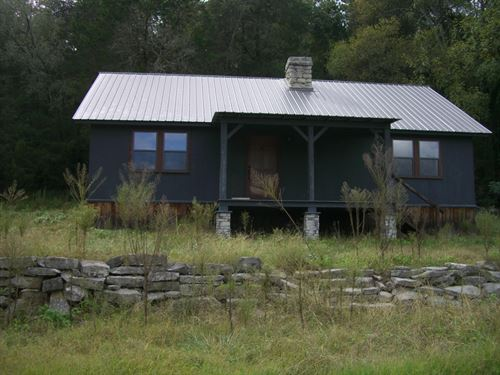 75 Acres With Cabin And Ducks : Stevenson : Jackson County : Alabama