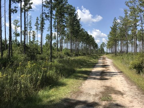 Nick Anderson Lane : Waycross : Ware County : Georgia