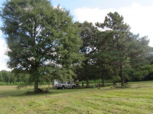 33.3 Acres-Little Bit Of It All : Kokomo : Marion County : Mississippi