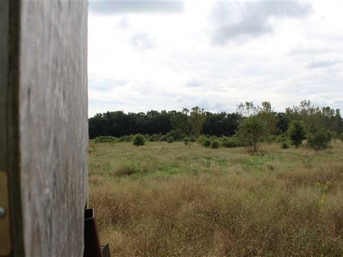 128 Acres Recreational Retreat Loc : Geneva : Adams County : Indiana