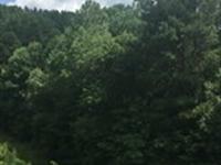 Highway 350 Tract : Iuka : Tishomingo County : Mississippi