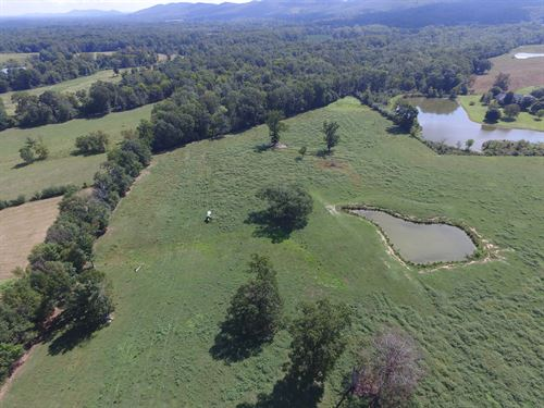 35 Acre, Pond & Creek : Ashville : Saint Clair County : Alabama