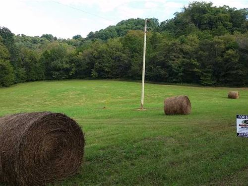 50 Acres in Beautiful Bell Buckle : Bell Buckle : Bedford County : Tennessee