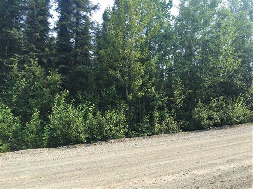 Level Dry Building Lot at Big Lake : Big Lake : Matanuska-Susitna Borough : Alaska