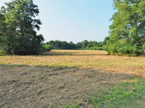 280 Acres Hunting Land For Sale Sou : Prentiss : Jefferson Davis County : Mississippi
