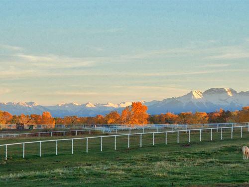 Equestrian Horse Ranch Montrose : Montrose : Colorado