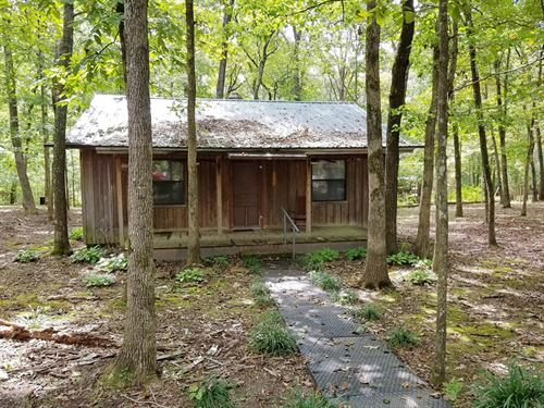 Cabin Near Tennessee River Marina : Lobelville : Perry County : Tennessee