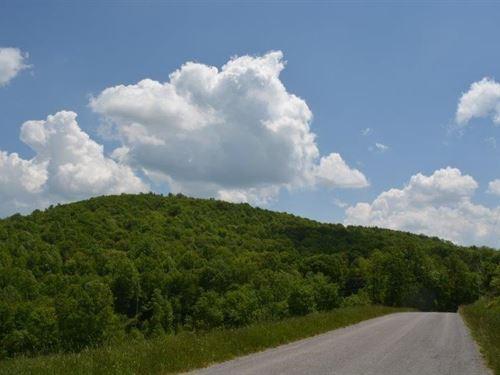 70 Acres Blue Ridge Parkway : Willis : Floyd County : Virginia