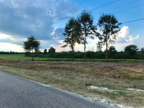 5 Acres Community Water Opp : Opp : Covington County : Alabama
