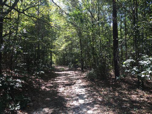 Yancey Tract : Toomsboro : Wilkinson County : Georgia