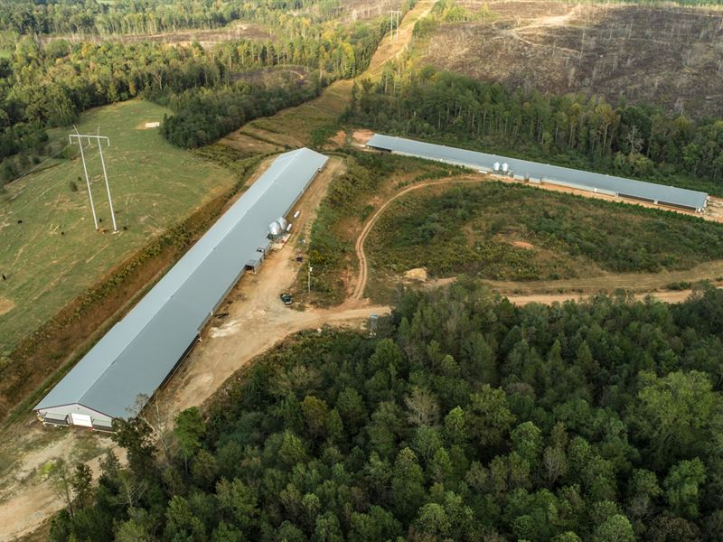 2 House Mega Farm In E, Alabama : Woodland : Randolph County : Alabama