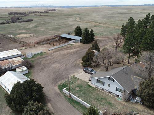 Antelope Creek Ranch Parcel 1 : Franktown : Douglas County : Colorado
