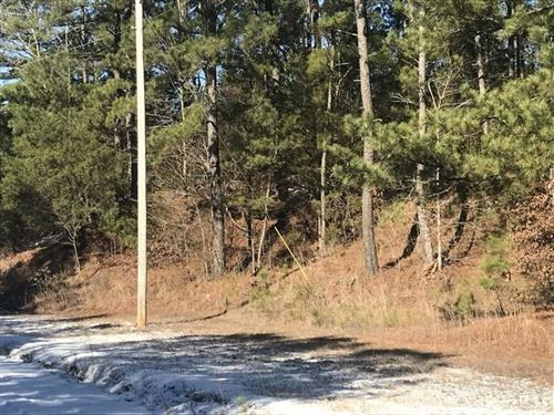 11+ / Acres, Great Timber Parcel : Byhalia : Marshall County : Mississippi
