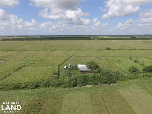 Goldenrod Premium Farmland Tract : Arcadia : Desoto County : Florida