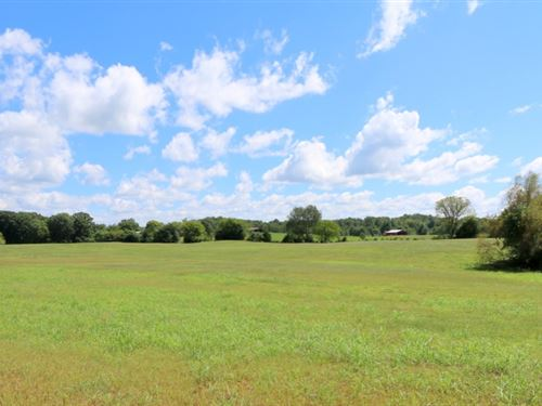 Brick Home & 198 Acres In 26 Tracts : Sparta : White County : Tennessee