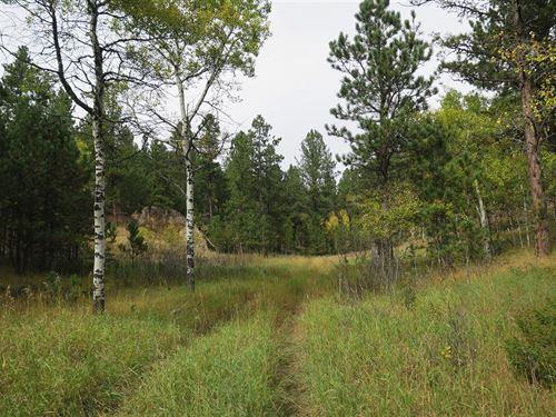 Whitetail Ridge : Four Corners : Weston County : Wyoming