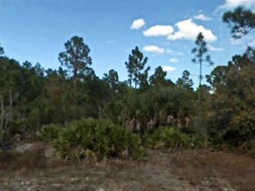 Lee County, Fl $36,500 Negotiable : Lehigh Acres : Lee County : Florida