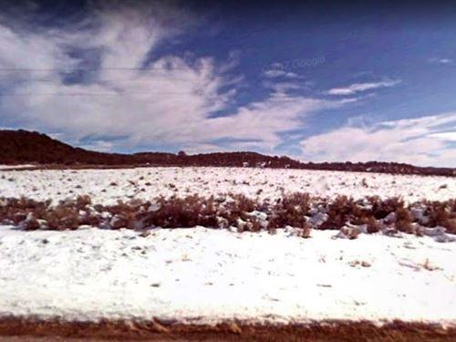 5 Acre Paradise For You : Tierra Amarilla : Rio Arriba County : New Mexico