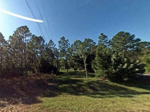 Collier County, Fl $70,000 : Rural Estates : Collier County : Florida