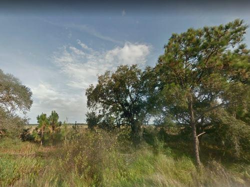 Polk County, Fl $21,000 : River Ranch : Polk County : Florida