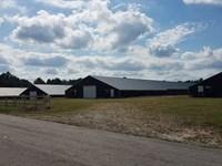 Robinson Farm, 4 House Broiler Farm : Bowdon : Carroll County : Georgia