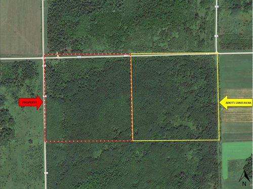 Potlatch Hunting Land, Meadowlands : Meadowlands : Saint Louis County : Minnesota