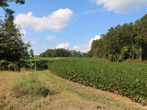 Land For Sale in Dobson, NC : Dobson : Surry County : North Carolina