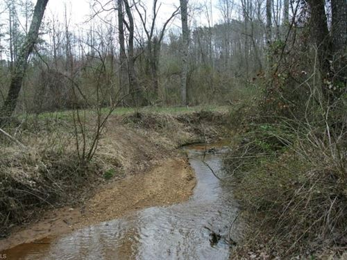 Land For Sale in Westfield, NC : Westfield : Surry County : North Carolina