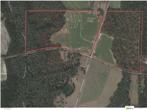 South Grady County Hunting Property : Whigham : Grady County : Georgia