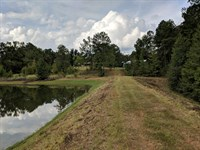 24+/- Acre Farm : Goodwater : Coosa County : Alabama