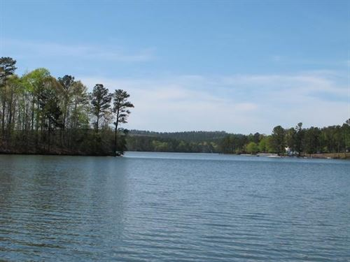 Ideal For Lake Front Development : Wedowee : Randolph County : Alabama