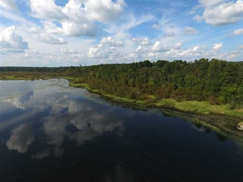 Reduced, 4.1 Acres of Waterfront : Gaston : Northampton County : North Carolina