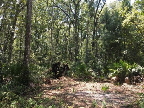 5.86 Acres Land For Sale Camden CO : Kingsland : Camden County : Georgia