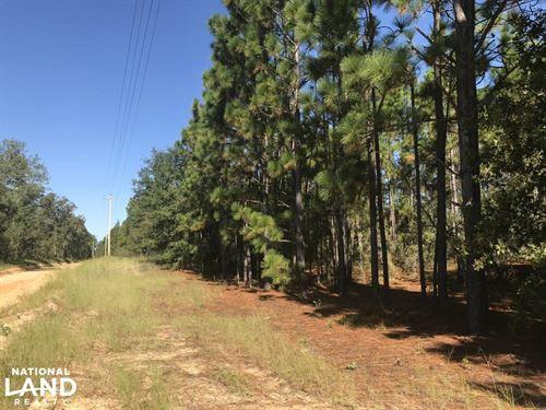 Cedar Wren Recreational Homesite : Windsor : Aiken County : South Carolina
