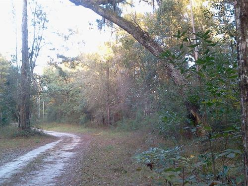 Check Out Price This River Front : Mayo : Lafayette County : Florida