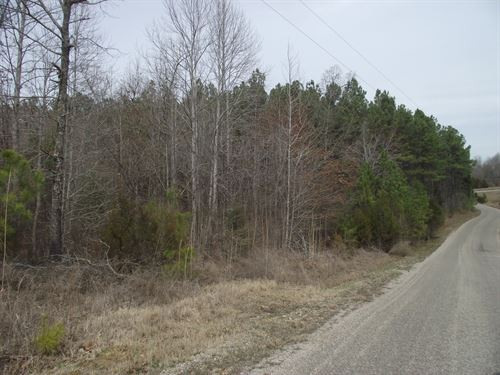 Wooded Land Outside Adamsville Tn : Adamsville : McNairy County : Tennessee
