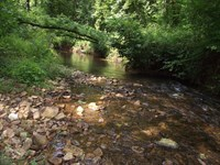 Recreational Land Tn, Creek No : Hohenwald : Lewis County : Tennessee