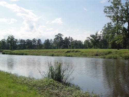 Golf Riverfront Home Site Within : Springfield : Livingston Parish : Louisiana