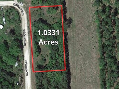 Un-Restricted Acre Home Site : Corrigan : Polk County : Texas