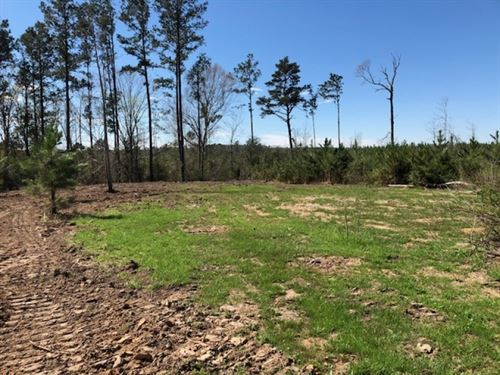 18 Acres With Spring Fed Creek In : McComb : Pike County : Mississippi