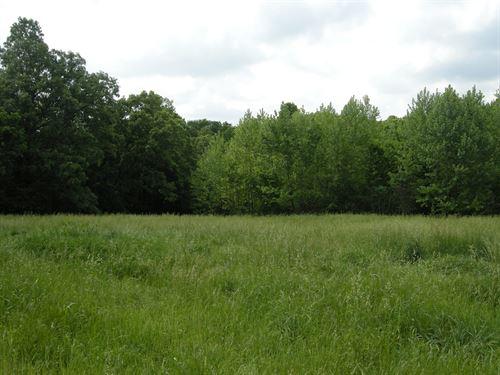Northwest Arkansas 1.48 Acre Lot : Fayetteville : Washington County : Arkansas