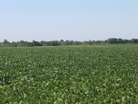 633 ac M/L Tillable Row Crop : Ionia : Benton County : Missouri