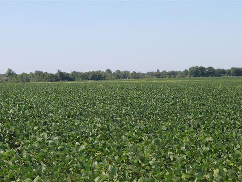 633 ac M/L Tillable Row Crop : Ionia : Benton County : Missouri