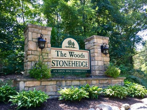 Buildable Lot Woods Stonehedge : Augusta : Kalamazoo County : Michigan