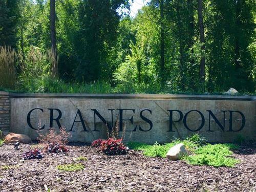 Buildable Lot Crane's Pond, Gull : Richland : Kalamazoo County : Michigan