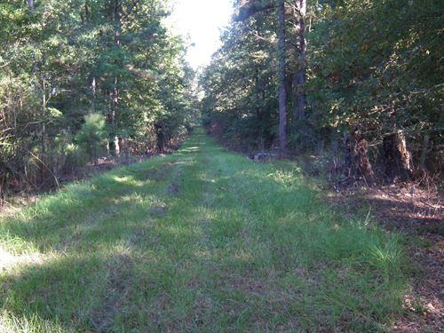 Sid Law 80 : Brandon : Rankin County : Mississippi