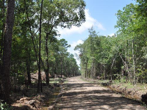 661 Ac Batson Prairie : Batson : Hardin County : Texas